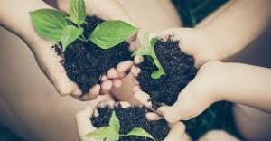 food environment